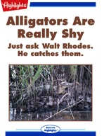 Alligators Are Really Shy