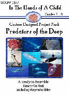 Predators of the Deep  Lapbook