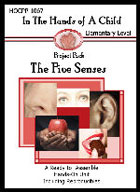 The Five Senses Lapbook