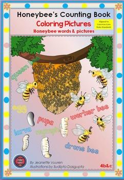 COLORING PICTURES: HONEYBEE WORDS & PICTURES-4b&c