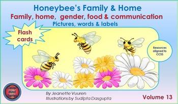 HONEYBEE'S FAMILY & HOME FLASH CARDS VOLUME 13