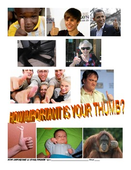 HOW IMPORTANT IS YOUR THUMB? Primate thumb coordination