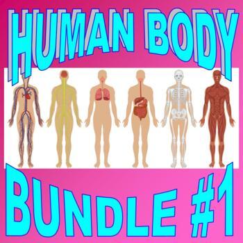 HUMAN BODY Bundle Package #1 (Worksheet, Projects, Activit