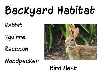 Habitat - Backyard