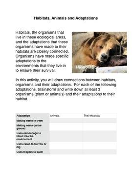 Habitats, Animals and Adaptations