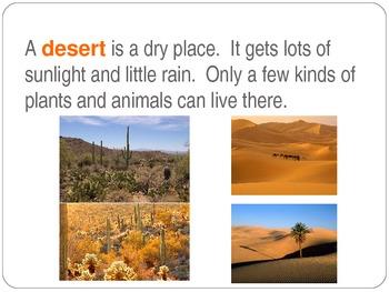 Habitats - Desert