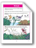 Habitats: Wetlands and Water Habitats