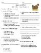 Half Chicken Vocabulary & Comprehension Test - Journeys