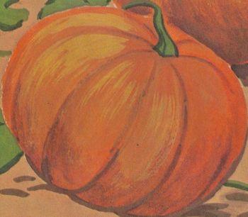 Halloween Pumpkin Story w/ 7 Multiple Choice Reading Compr
