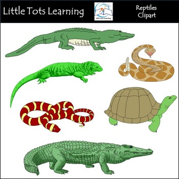Hand Drawn Reptiles Clip Art