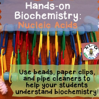 Hands-On Biochemistry: Nucleic Acid Structure - DNA and RNA
