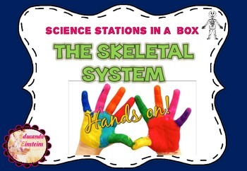 Hands on! The Skeletal System Lab  (Science Stations in  a box)
