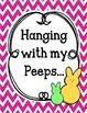 Hanging with my peeps Bulletin Board and Writing Assignmen