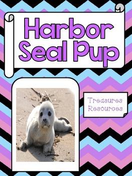 Harbor Seal Pup Focus WallSecond Grade Treasures Common Co