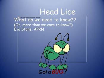 Head Lice Basics