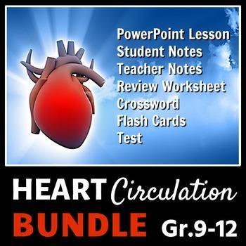 Heart Circulation - LESSON BUNDLE