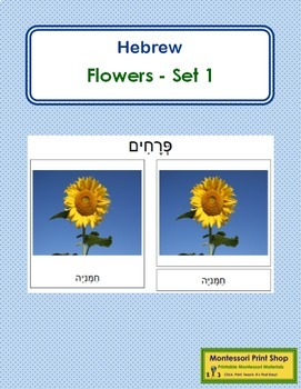 Hebrew - Flower Cards: Set 1