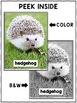 Close Reading Hedgehog Activities