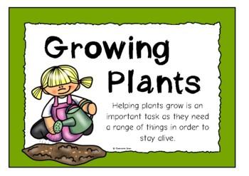 Helping Plants Grow Well