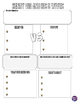 Henry VIII and the Church of England Graphic Organizer