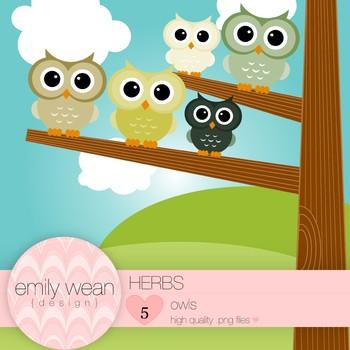 Herbs - Owl Clip Art