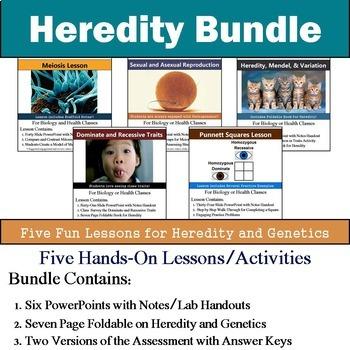 Heredity Unit - Genetics Unit (Five 90min Lesson Bundle wi