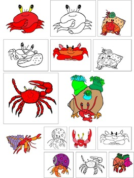 Hermit Crab and Friends Commercial Clip Art