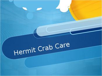 Hermit crab class pet powerpoint