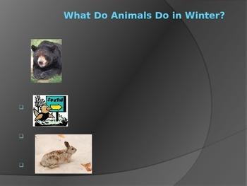 Hibernate, Migrate, and Adapt PowerPoint