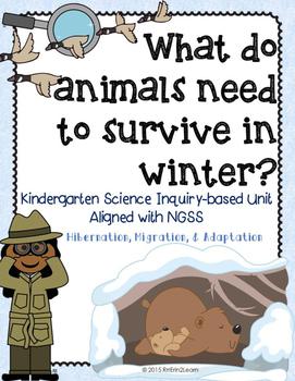 Hibernation Migration Adaptation Winter Animals Kindergart