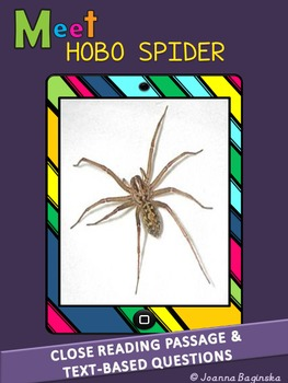 Hobo spider: leveled nonfiction, close reading passage; CC
