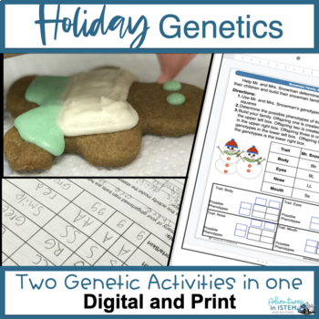 Holiday Genetics Project: Snowman family and Edible Ginger