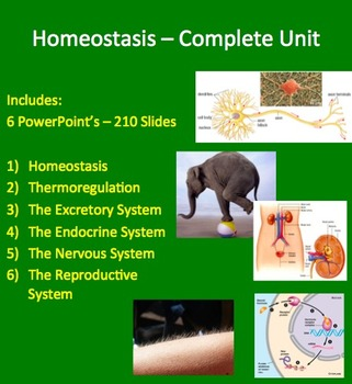 Homeostasis Complete Unit - PowerPoint Lessons, Notes, Wor