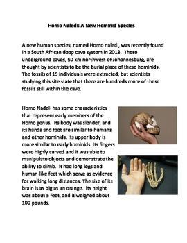 Homo Naledi: A New Hominid Species