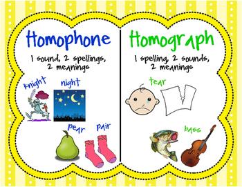 Homograph and Homophone Poster!