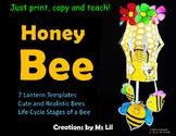 Honey Bee Craft  ::  Honey Bee Life Cycle Activity