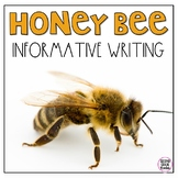 Honey Bee Informative Writing