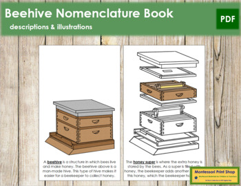 Honey Beehive Nomenclature Book