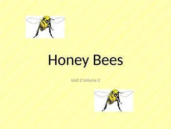 Honey Bees -Day 3 &4