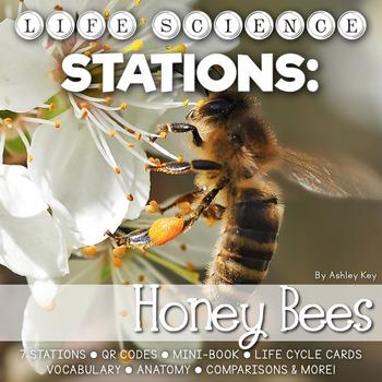 Honeybee Unit Life Cycle Stations- Montessori Cards, Mini-