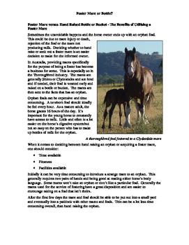 Horse Breeding Package
