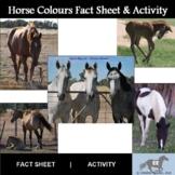 Horse Colours Activity