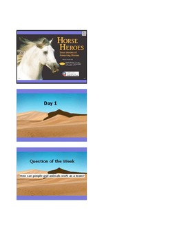 Reading Street Grade 4 Unit 2.4 Horse Heroes