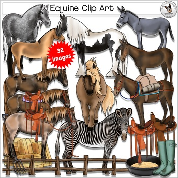 Horse, Pony, Donkey, Mule, Zebra Clip Art. Comes with acce