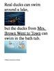 Houghton Mifflin Grade 2 Theme 1 Activities