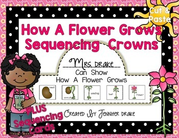 How A Flower Grows Sequencing Crowns