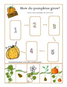 How Do Pumpkins Grow Cut & Paste