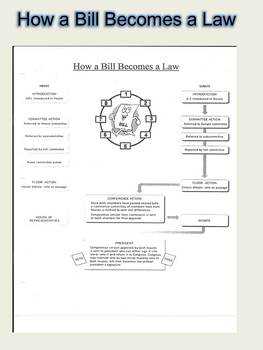 How a Bill Becomes a Law Activities