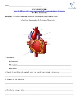How the Heart Works- Internet Assignment for Science How S