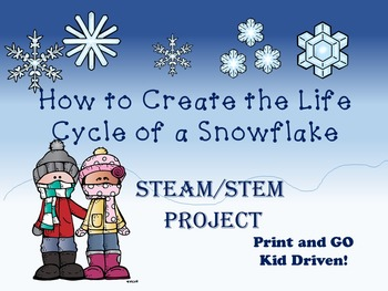The Life Cycle of a Snowflake
